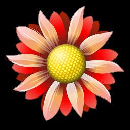 Доставка свежих цветов в вашем городе